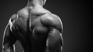 man with defined back and shoulder muscles