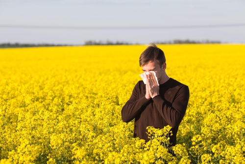 man sneezing pollen allergy in field