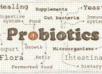 Probiotics source and benefits