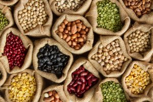 legumes and beans rich in phytic acid